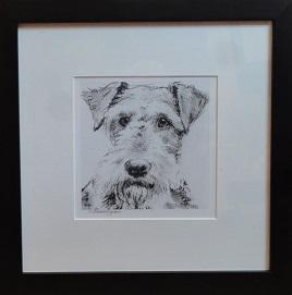 Tilley framed