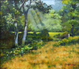 Leighton Moss Woods